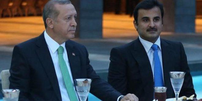بعد خطاب السيسي.. اتصال أردوغان بتميم يفجر موجة ساخرة