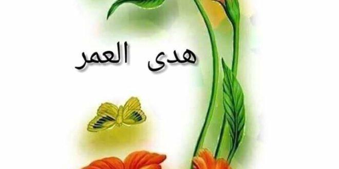 كعابرة سبيل ../  بقلم :هدى أحمد العمر
