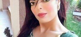 السيرة الذاتية والأدبية  للروائية المصرية جيهان الزهيري